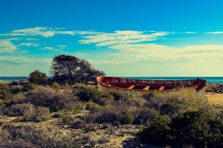 beach-2005897_1920